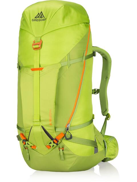 Gregory Alpinisto 50 - Mochila - Medium verde